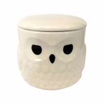 Harry Potter Hedwig Coffee Mug w Lid 16 Oz by Our Name is Mud from Enesco