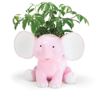 Hand Painted Poly Resin Pink Sissy Elephant Planter 7 Inch from Burton & Burton