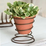 Bedspring Caddy with Handmade Terra Cotta Pot Planter 5 Inch from CTW Home Collection