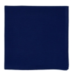 Blue Cotton Cloth Table Napkin 20x20 from Design Imports