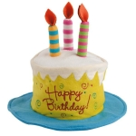 Happy Birthday! Cake Design Cotton Embellished Felt Party Hat from Design Imports
