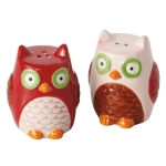 Colorful Owls Ceramic Salt & Pepper Shaker Set from Design Imports