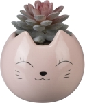 Pink Cat Face Design Decorative Stoneware Planter With Artificial Botanical Succulent 4.75 Inch from Primitives by Kathy