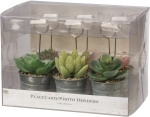 Set of 6 Mini Succulent Pot Photo Holders   from Primitives by Kathy