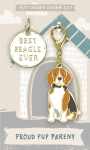 Best Beagle Ever Dog Collar Charm & Matching Owner Keychain from Primitives by Kathy