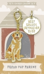 Best Golden Retriever Ever Dog Collar Charm & Matching Owner Keychain on Backer Card from Primitives by Kathy