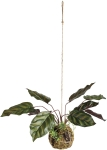 Artificial Croton Hanging Planet 18 Inch from Primitives by Kathy