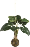 Artificial Botanical Large Monstera Hanging Plant 35 Inch from Primitives by Kathy