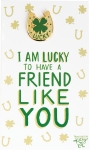 I Am Lucky To Have A Friend Like You Enamel Pin With Greeting Card from Primitives by Kathy