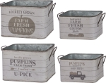 Set of 2 Decorative Tin Storage Bins (Fresh Pumpkins & Fresh Gourds) from Primitives by Kathy