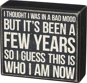 I Guess This Is Who I Am Now Decorative Wooden Box Sign from Primitives by Kathy