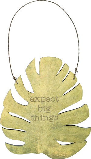 Botanical Leaf Expect Big Things Decorative Hanging Wall Décor Sign from Primitives by Kathy
