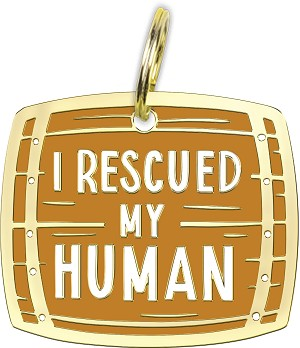 I Rescued My Human Dog Collar Pet Charm from Primitives by Kathy